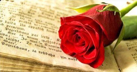 La tradición del día de Sant Jordi venta de rosas y libros