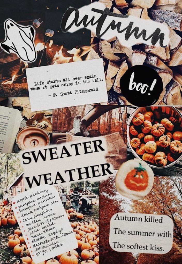 Life starts all over, fondos gratis, calabazas de otoño, fall wallpapers - fondos de otoño para fotos, fondos de otoño para celular, fondos de otoño vintage